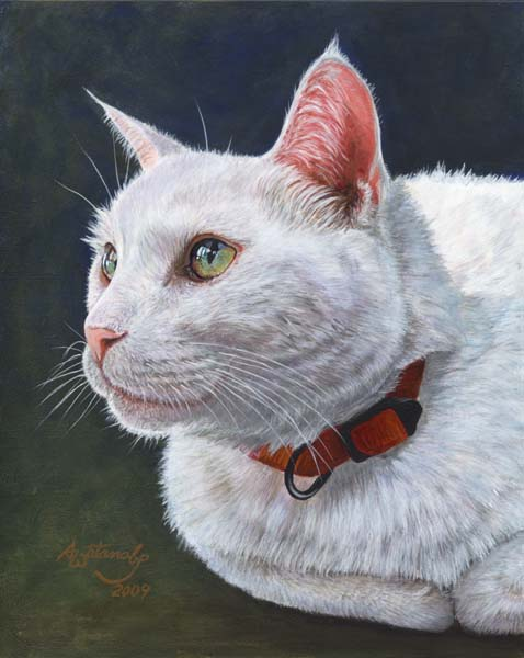 Shiro (White Cat Print) - Click Image to Close