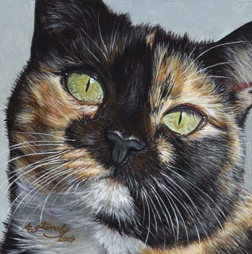 Cali's Stare (Tortoiseshell Calico Cat Print) - Click Image to Close