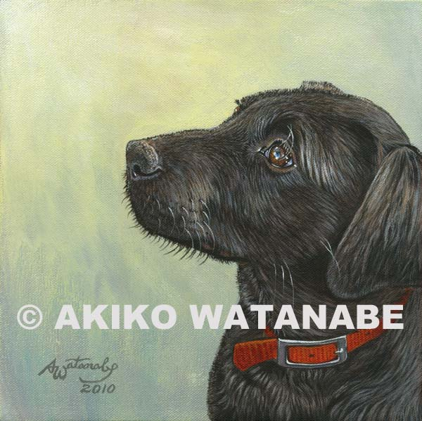 Angel Light (2) (Black Lab Puppy Dog art)