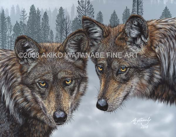 Mexican Gray Wolves wolf