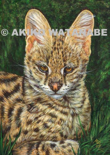 Open Edition Print of Serval Painting (Big Wild Cat)