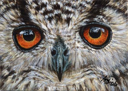 ACEO Owl #1