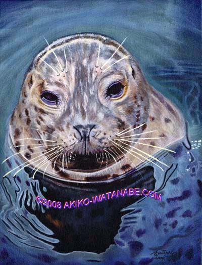 An Encounter (12x16 Harbor Seal painting)