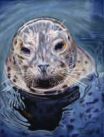 An_Encounter_Seal_small