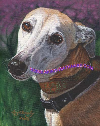 At the Dogwood Park (8x10 Greyhound Dog)