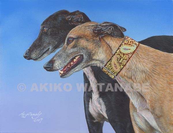 Dynamic Duo (11x14 Greyhound Dog painting)